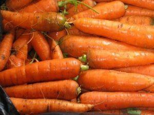 גזר - ירקות אורגניים, ייעוץ תזונתי