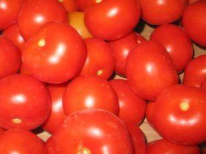 עגבניה - ירקות אורגניים וייעוץ תזונתי
